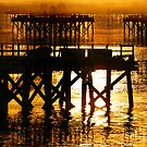 Pier Of The Pacific Northwest  by Val  Brackenridge