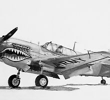 P-40 Warhawk, (Kittyhawk, Kitty bomber, Tomahawk) by Dave Black