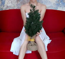 Young woman holding a small christmas tree by Reinvention