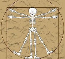 Vitruvian Man Skeleton Cartoon  by BluedarkArt