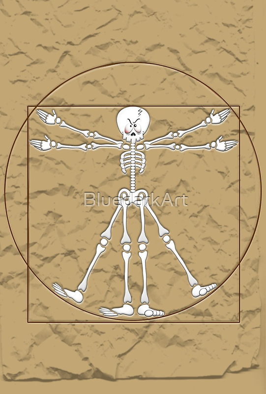 Vitruvian Man Skeleton Cartoon  by BluedarkArt