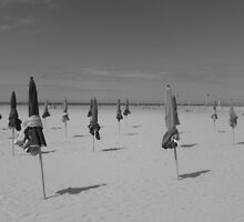 The parasols of Deauville - black & white by Caroline Clarkson
