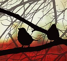 Birds In Shadow by SRowe Art
