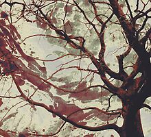 Twisted Dance - Antique Red by SRowe Art