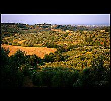 Toscana by johnjgt