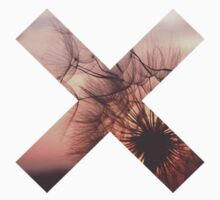 THE XX LOGO- DANDELION  by symptoms