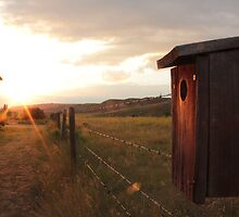 Badlands Birdhouse at Sunset by Goerzen