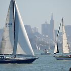 Sunday Sailing by JARBO