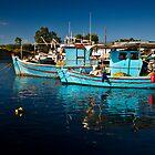 Going fishing... by George Parapadakis (monocotylidono)