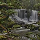 Horseshoe Falls. (Tasmania) by Warren  Patten
