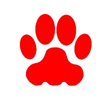 Red Big Cat Paw Print Photographic Print