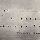 Birds and Notes by korinneleigh