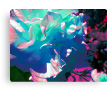 The Altered Rose Canvas Print