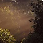 Morning Faery Mist by WildThingPhotos
