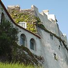 Portuguese Castle on the Algarve Coast  by clizzio