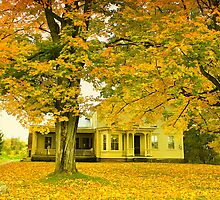 Autumn In Franklin by Deborah  Benoit