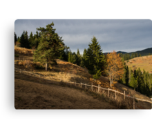 Fenced In Warm Autumn Light Canvas Print