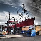 Fishing boat, Stanley. Tasmania. by Esther's Art and Photography