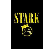 Stark Legacy Photographic Print