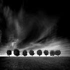 Eight by laantonov