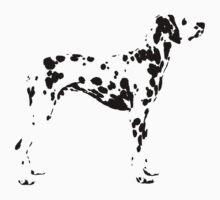 Dalmatian by natbern
