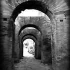 Arches Palatine Hill - Rome, Italy by LaRoach