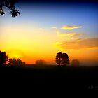 Horse Farm Morning II by John Carey