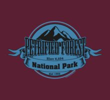 Petrified Forest National Park, Arizona by CarbonClothing