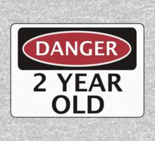 DANGER 2 YEAR OLD, FAKE FUNNY BIRTHDAY SAFETY SIGN by DangerSigns