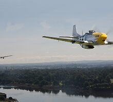 P51 Mustang - Rail Strike by warbirds
