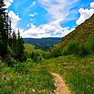 """Trail back from Booth Falls"" Vail, CO by AlexandraZloto"