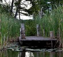Dock in the Marsh by MoniqueFlynn