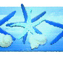 """Day 212   365 Day Creative Project  """"Starfish"""" by Robyn Williams"""
