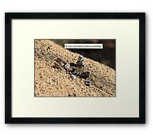 Speeder Accident Framed Print