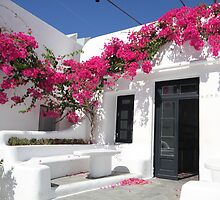 Greek Island Sights by kateabell