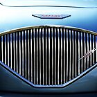Austin Healey 100, Grill by Stephen Mitchell
