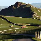 Chrome Hill Just Before Sunset by Paul  Green