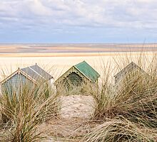 Dunes and huts. by fulhamphil