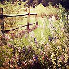 Secret Garden 2 by ElleEmDee