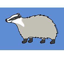 Cute European Badger  Photographic Print