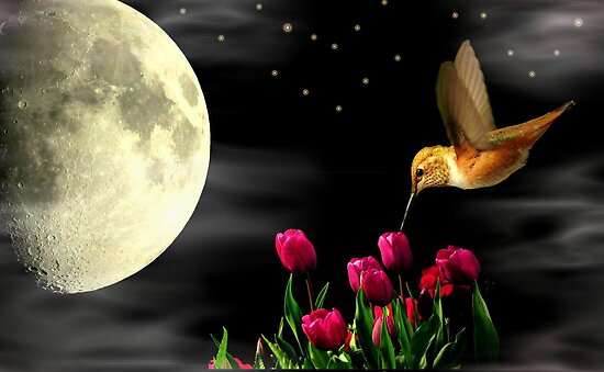 HUMMING BY THE MOON~ by RoseMarie747
