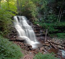 Dog Days at Erie Falls by Gene Walls