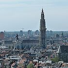 Antwerp from MAS by Trish Meyer