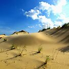 Sand Dunes, North Carolina by Alberto  DeJesus