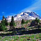 Mt Hood by Jennifer Hulbert-Hortman