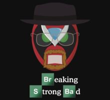 Breaking Strong Bad by Jake  Jones