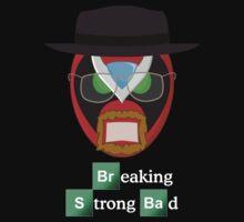 Breaking Strong Bad by Jake  Jones