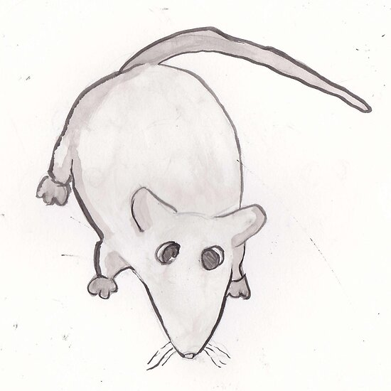 Buffy the Rat. by Blackvelvetron