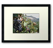 Merlot Ready Framed Print
