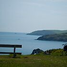 Berry head - wheelchair on cliff by Chris Martin
